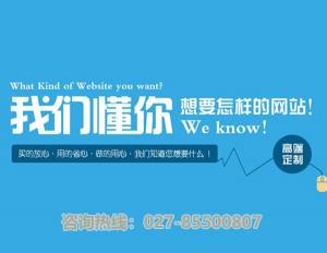 武汉网页设计
